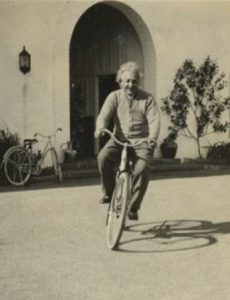 Sloww Einstein Bicycle Moving Quote