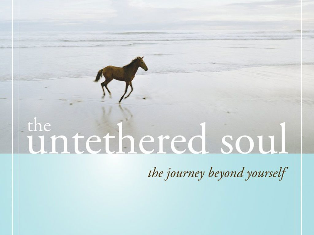 "20 Conscious Themes from ""The Untethered Soul"" by Michael Singer (Book Summary)"