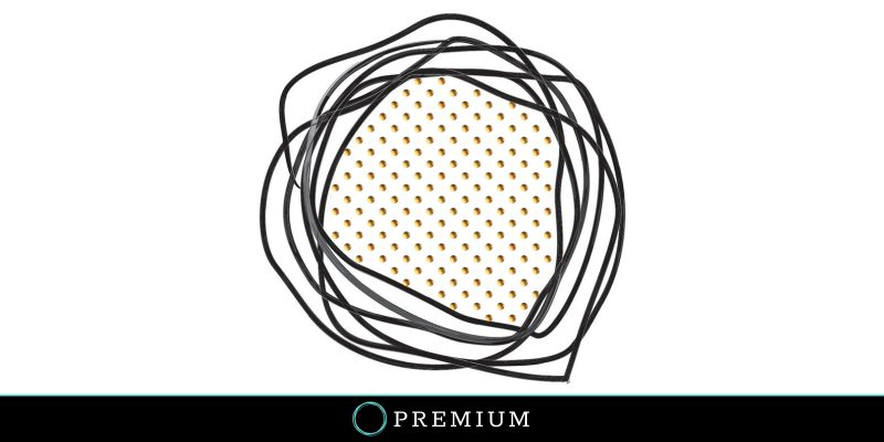 Sloww Essentialism Atomic Habits Premium Post