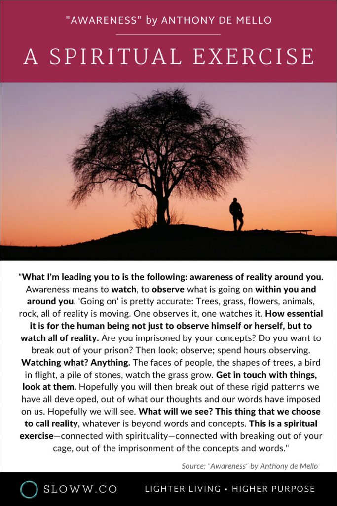 Sloww Awareness Anthony de Mello Spiritual Exercise