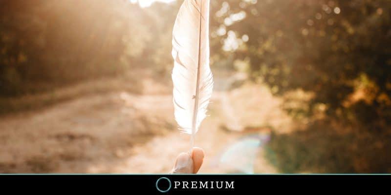 Sloww In Praise of Slowness Premium