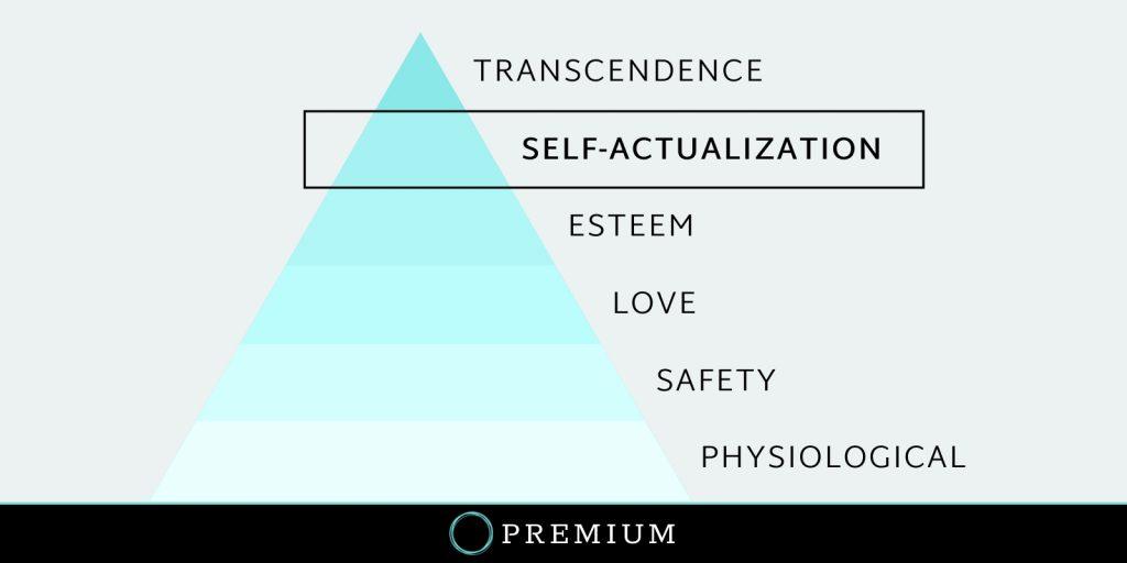 Sloww Self-Actualization Premium How To