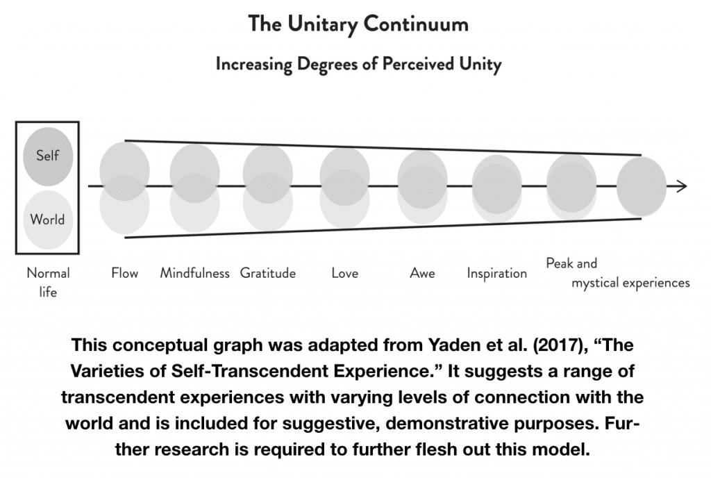 Transcend Book Unitary Continuum
