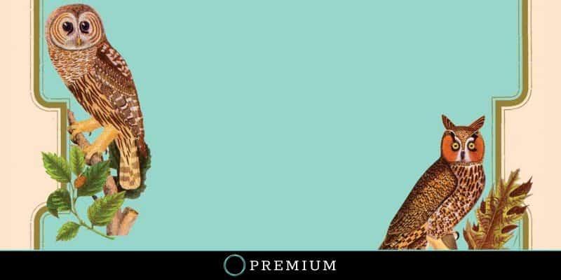 Sloww A Calendar of Wisdom Leo Tolstoy Premium