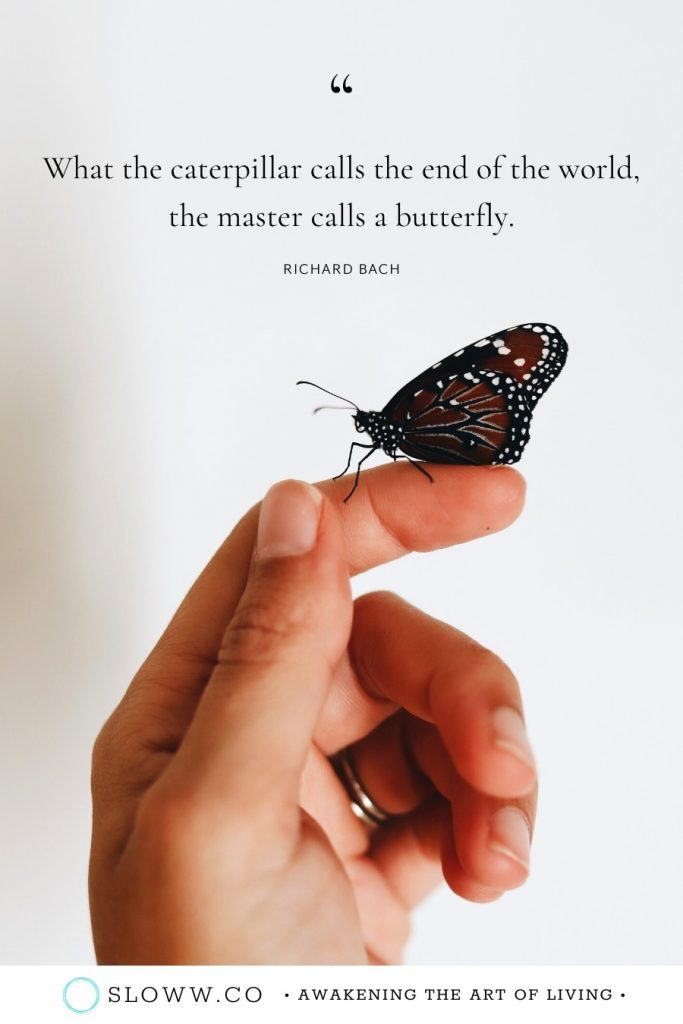 Sloww Caterpillar Butterfly Richard Bach Quote