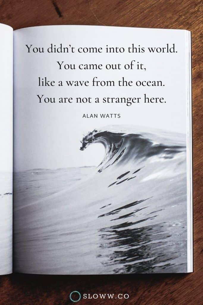 Sloww Wave Stranger Alan Watts Quote