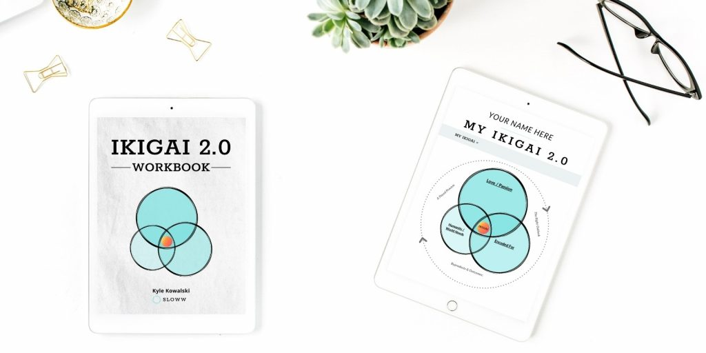 Sloww Ikigai 2.0 eBook Workbook