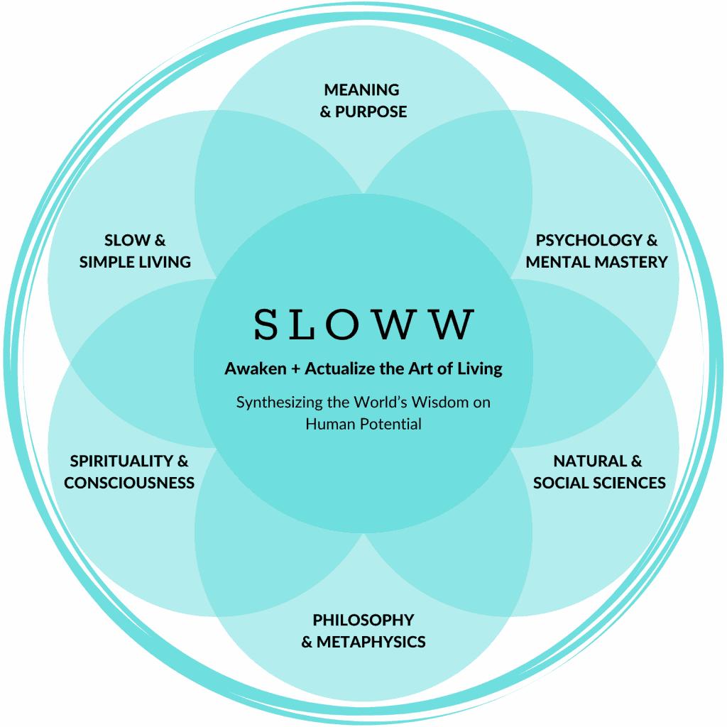 Sloww Focus Disciplines
