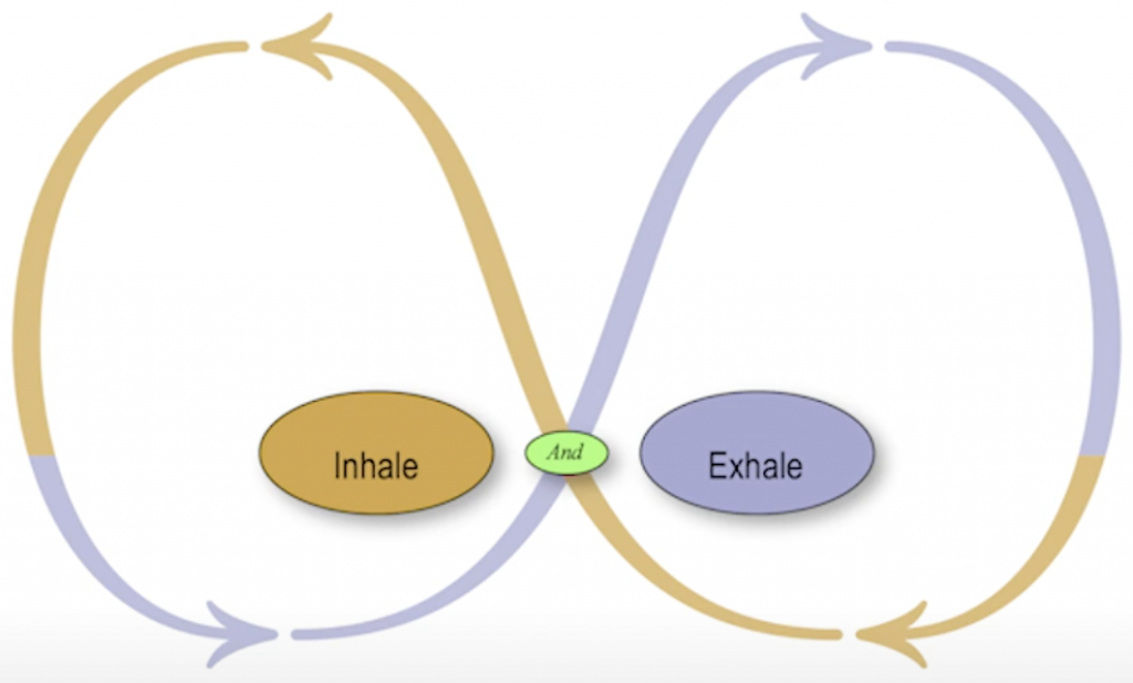 Polarity Inhale and Exhale Example