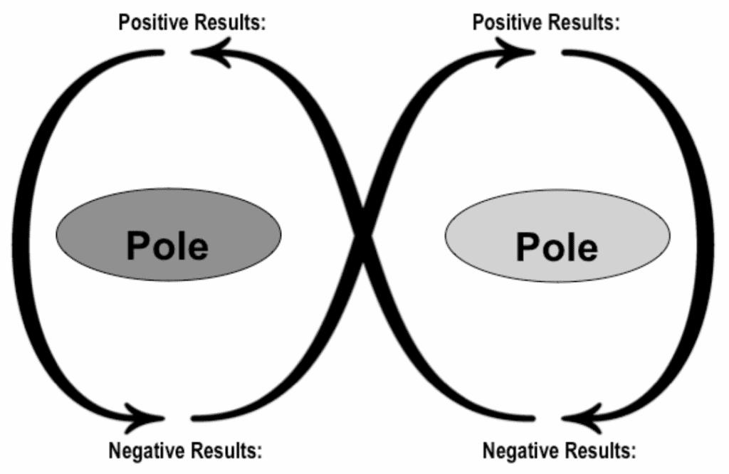 Polarity Visualized