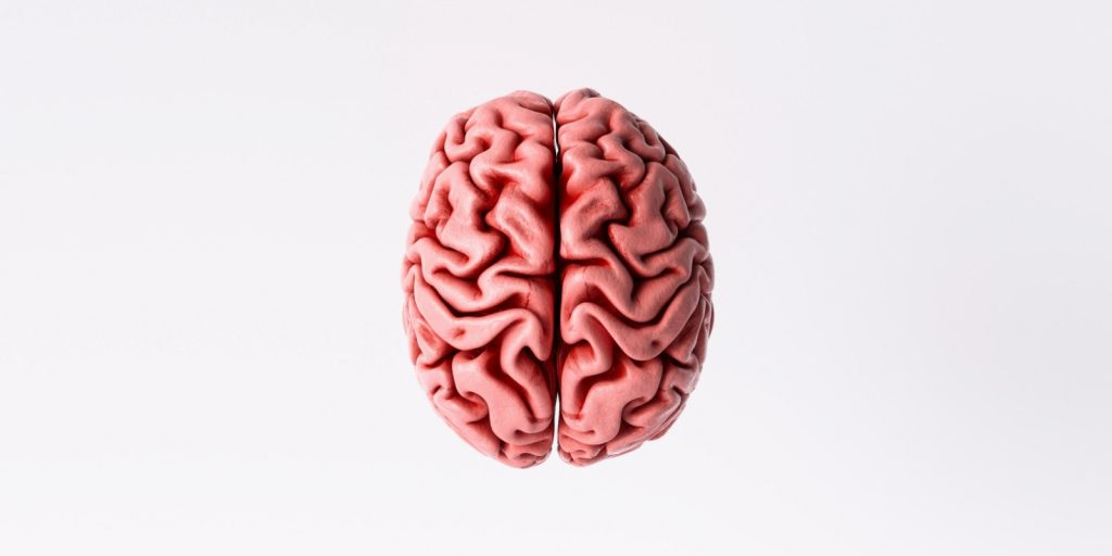 Left Brain Right Brain Hemispheres Research from The Master and His Emissary