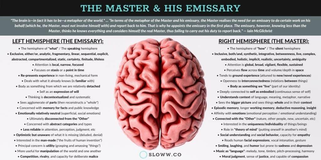 Sloww The Master and His Emissary Left Brain Right Brain Hemispheres Infographic