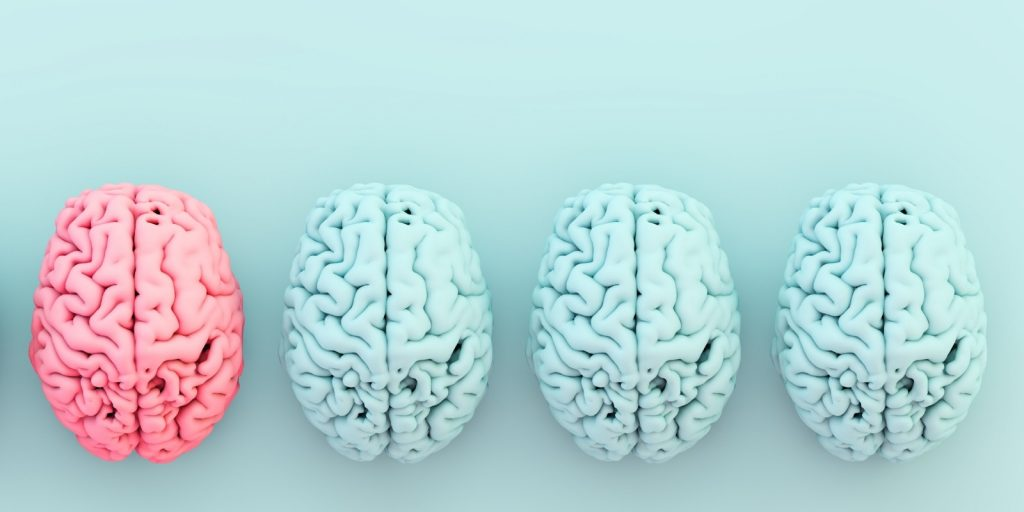 Sloww Whole Brain Living by Jill Bolte Taylor