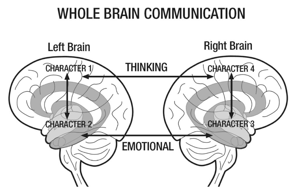 Whole Brain Living Brain Connection